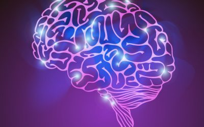 Wie wichtig ist die emotionale Intelligenz im Umgang mit Ihren Mitmenschen?